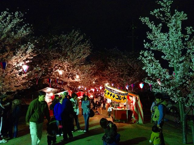 豊川桜トンネル
